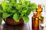 Применение масла мяты для лица, рецепты и преимущества